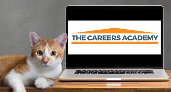 The Careers Academy, career coaching, career support, career advice