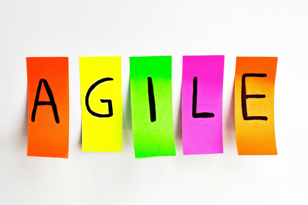 Agile, agility, business buzzword, change management, change, careers, career change, Jane Jackson
