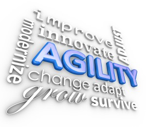 agile, agility, business buzzword, change management, careers, career change, Jane Jackson