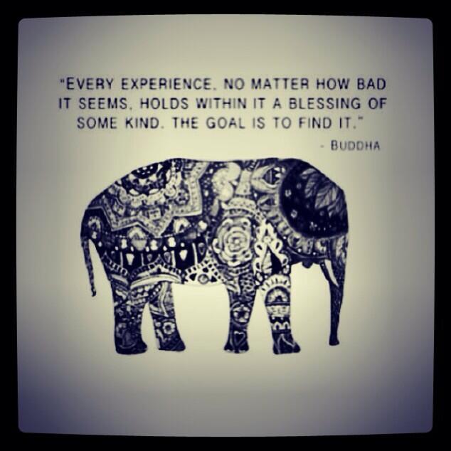 buddha, elephant, blessings